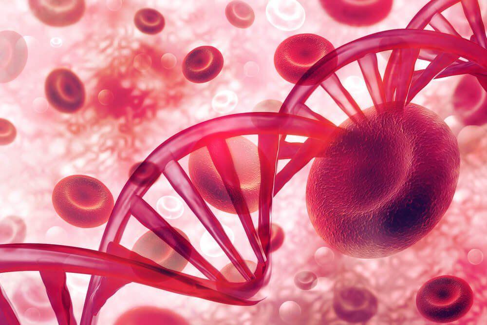 ¿Sabes que es el plasma sanguíneo y en qué situaciones debe ser utilizado?