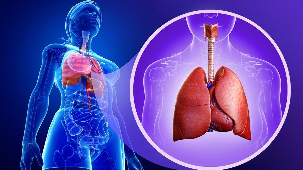 ¡Conoce hoy mismo, cuales son los tipos de bronquitis y como se presentan!