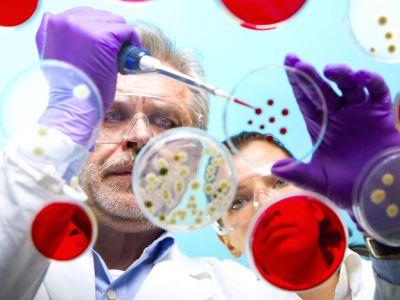 ¡El Ébola  se ha convertido en una emergencia de salud pública de importancia internacional, conoce todo al respecto!