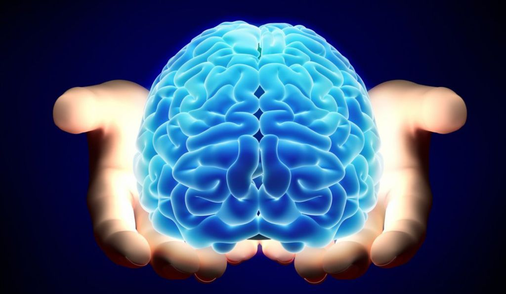 ¿Cómo crea el cerebro nuestra realidad?